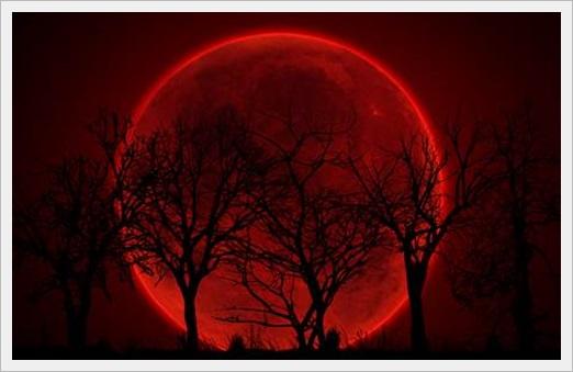 赤い月 デカく見える理由