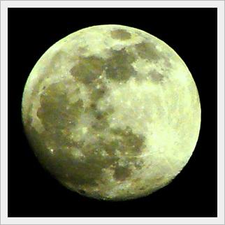 月の表情 白