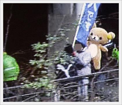 箱根駅伝名物!面白い応援まとめ!フリーザやリラックマに犬まで2