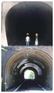 からかい上手の高木さんの登場人物!聖地(ロケ地)は小豆島以外に?柳のトンネル